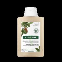Klorane Beurre Cupuaçu Bio Shampoing Cheveux Très Secs 200ml à Ris-Orangis