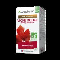 Arkogélules Vigne Rouge Bio Gélules Fl/45 à Ris-Orangis