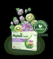 Phytoxil Transit Comprimés B/20 à Ris-Orangis