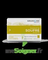 Granions De Soufre 19,5 Mg/2 Ml S Buv 30amp/2ml à Ris-Orangis