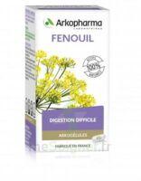 Arkogélules Fenouil Gélules Fl/45 à Ris-Orangis