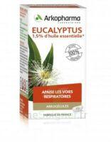 Arkogélules Eucalyptus Gélules Fl/45 à Ris-Orangis