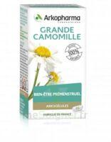 Arkogélules Grande Camomille (Partenelle) Gélules Fl/45 à Ris-Orangis