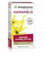 Arkogélules Hamamélis Gél Fl/150 à Ris-Orangis