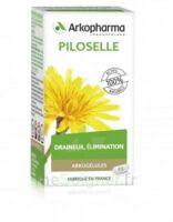 Arkogélules Piloselle Gélules Fl/45 à Ris-Orangis