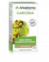 Arkogélules Garcinia Gélules Fl/45 à Ris-Orangis