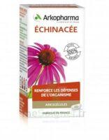 Arkogélules Echinacée Gélules B/45 à Ris-Orangis
