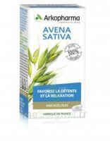 Arkogélules Avena Sativa Gélules Fl/45 à Ris-Orangis