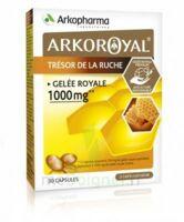 Arkoroyal Gelée Royale 1000 Mg Caps B/30 à Ris-Orangis