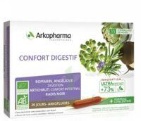 Arkofluide Bio Ultraextract Solution buvable confort digestif 20 Ampoules/10ml à Ris-Orangis