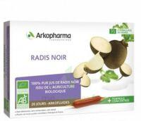 Arkofluide Bio Ultraextract Radis Noir Solution Buvable 20 Ampoules/10ml à Ris-Orangis