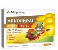 Arkoroyal Royal'fruits Gelée Royale Goji Grenade Baobab Solution Buvable 20 Ampoules/10ml à Ris-Orangis