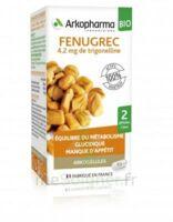 Arkogélules Fenugrec Bio Gélules Fl/40 à Ris-Orangis