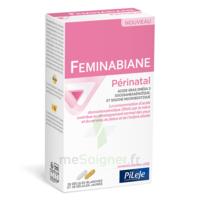Pileje Feminabiane Périnatal 28 Gélules Blanches Et 28 Gélules Jaunes à Ris-Orangis