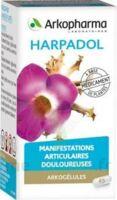 ARKOGELULES HARPAGOPHYTON Gélules Fl/150 à Ris-Orangis