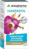 ARKOGELULES HARPAGOPHYTON, 150 gélules à Ris-Orangis