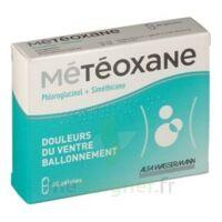 METEOXANE Gél Plq/30 à Ris-Orangis