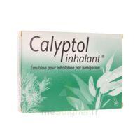 CALYPTOL INHALANT, émulsion pour inhalation par fumigation à Ris-Orangis