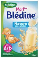 Blédine Ma 1ère blédine nature 250g à Ris-Orangis