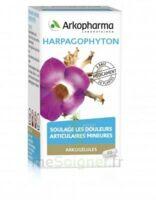 ARKOGELULES HARPAGOPHYTON Gélules Fl/45 à Ris-Orangis
