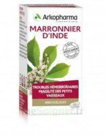 ARKOGELULES Marronnier d'Inde Gélules Fl/45 à Ris-Orangis