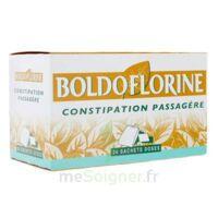BOLDOFLORINE, mélange de plantes pour tisane en sachet-dose B/24 à Ris-Orangis