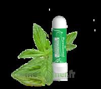 Puressentiel Respiratoire Inhaleur Respiratoire aux 19 Huiles Essentielles - 1 ml à Ris-Orangis