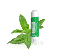 PURESSENTIEL RESPIRATOIRE Inhalation nasal 19 huiles essentielles à Ris-Orangis