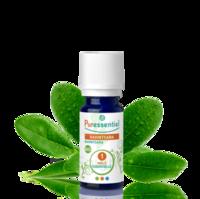 Puressentiel Huiles essentielles - HEBBD Ravintsara BIO* - 5 ml à Ris-Orangis