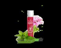 PURESSENTIEL ANTI-PIQUE Roller 11 huiles essentielles à Ris-Orangis