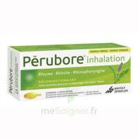 PERUBORE Caps inhalation par vapeur inhalation Plq/15 à Ris-Orangis