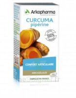Arkogelules Curcuma Pipérine Gélules Fl/45 à Ris-Orangis
