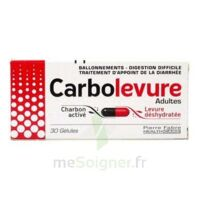 CARBOLEVURE Gélules adulte Plq/30 à Ris-Orangis