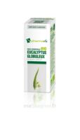 Huile essentielle Bio Eucalyptus Globuleux à Ris-Orangis