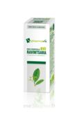 Huile essentielle Bio Ravintsara  à Ris-Orangis