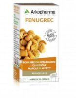 Arkogelules Fenugrec Gélules Fl/45 à Ris-Orangis