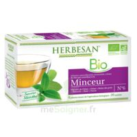 Herbesan Infusion Bio Tisane minceur 20 Sachets à Ris-Orangis