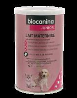 Biocanina Lait poudre maternisé B/400g à Ris-Orangis