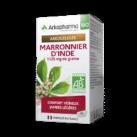 Arkogélules Marronnier D'inde Bio Gélules Fl/45 à Ris-Orangis
