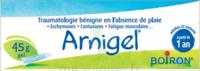 Boiron Arnigel Gel T/45g à Ris-Orangis
